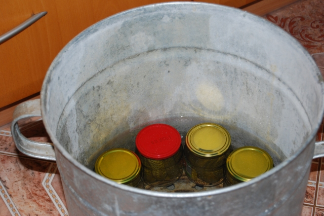 canner with pickled gherkins