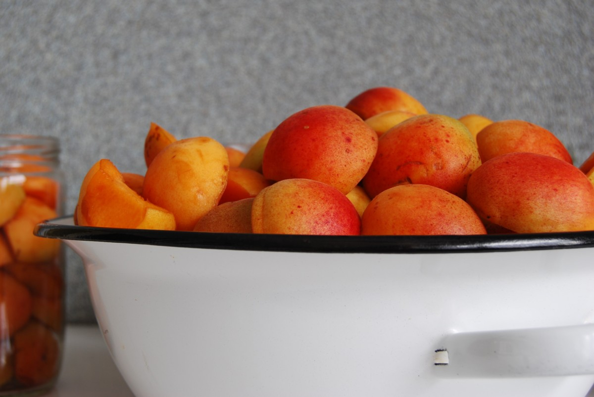 Preserving apricots