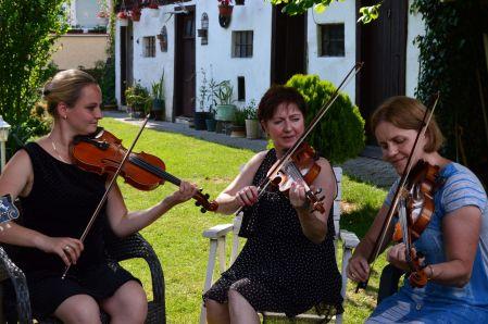 folk music in the garden